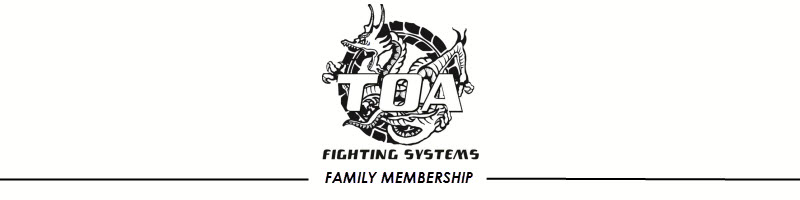 Toa Fighting Systems Southland Inc